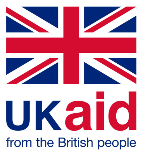 Dfid logo Page